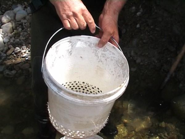 classifier bucket 0