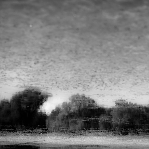 d5000 dof lakewoodforestpreserve nikon abstract blackwhite blackandwhite blur bw depthoffield forest landscape minimal minimalism monochrome natural noahbw pond reflection sky square trees water woods cloudsskiesandsuch painterly