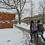 Winter Brain Students 150 x 150
