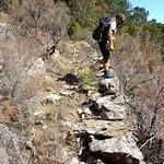 Le Chemin du Carciara amont (HR22)