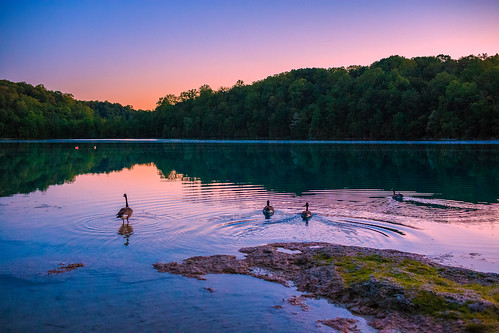 greenlakes greenlakesstatepark newyork centralnewyork upstate lake water sunset bluehour trees goose geese birds canon6d canon 6d deadmanspoint reef marlreef