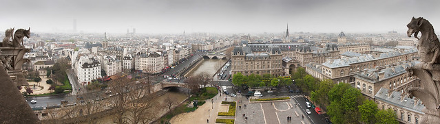 View to Seine from Notre-Dame de Paris
