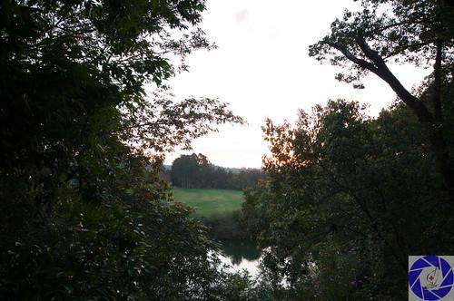 bellingen landscapes
