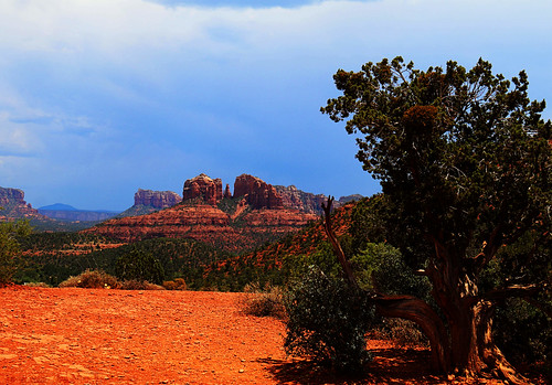 art beauty bright colorful colourful colors colours contrast dark design edge light natural outdoor outside perspective pretty scene serene tranquil shadow sky study sunlight sunshine texture tone weathered world sedona arizona cathedral rock landscape mountain formation tree cloud