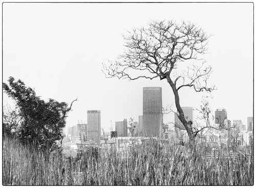 A View of Johannesburg from Langerman's Koppie | by Finepixtrix