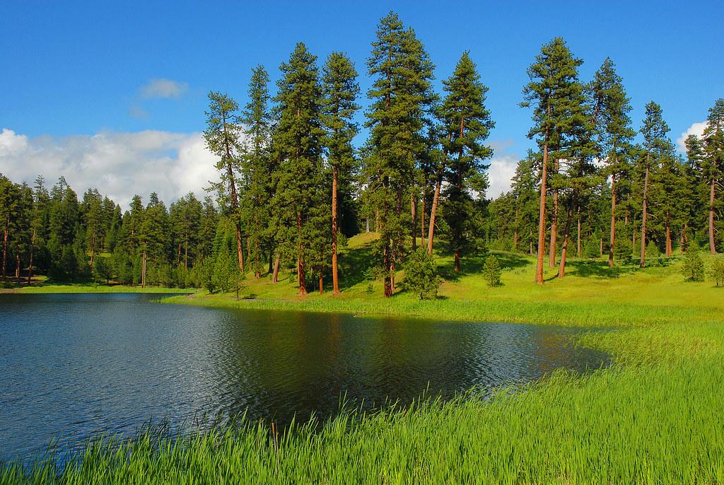 Walton Lake, Ochoco National Forest