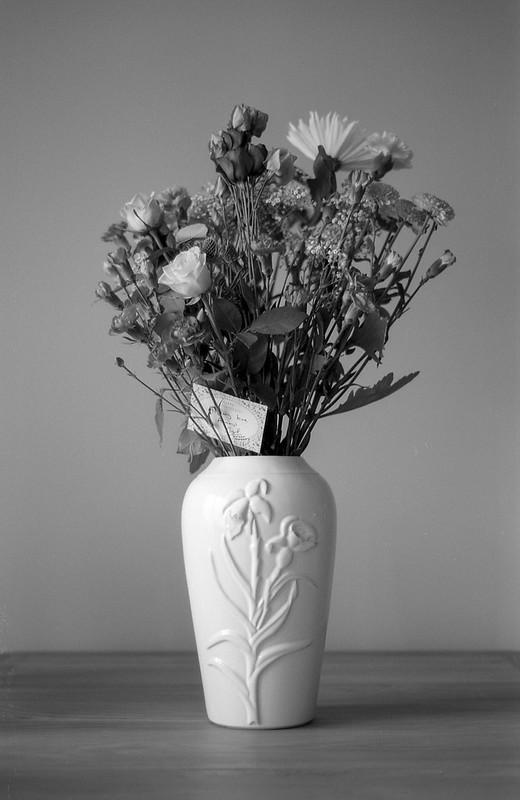 FILM - Flowers