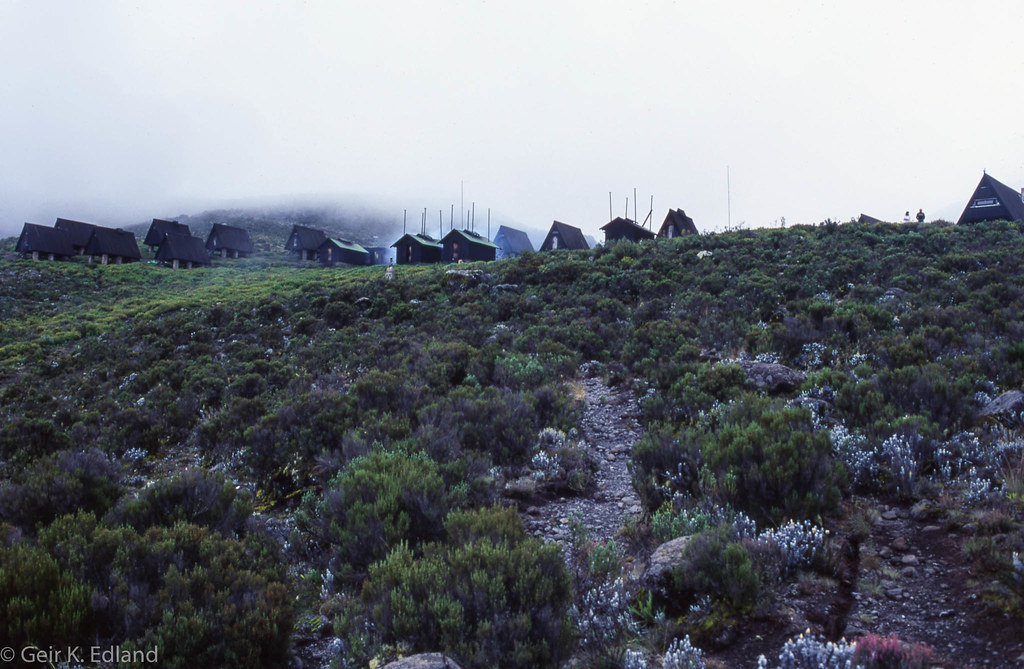 Kilimanjaro - the Marangu route