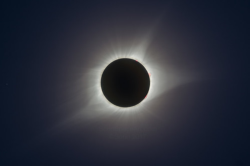 8-21 Total Solar Eclipse | by SoggyAstro