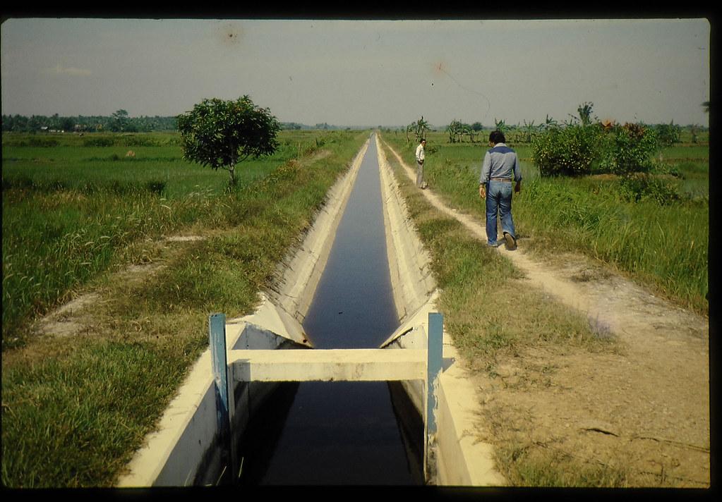 Irrigation Canal In Sekenchan Area,selangor = セランゴール州 ...
