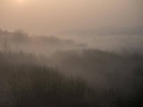 poland landscape nature olympus mist morning gdansk pomerania beautiful