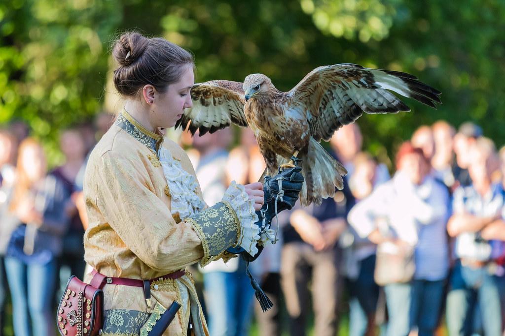 Birds Of Prey Show Horus Falknerei Jan Stegerer Flickr