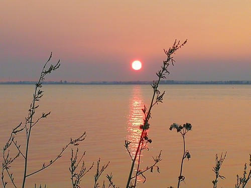 sunset tramonto sonnenuntergang smoke forestfires canada bc surrey crescentbeach evening