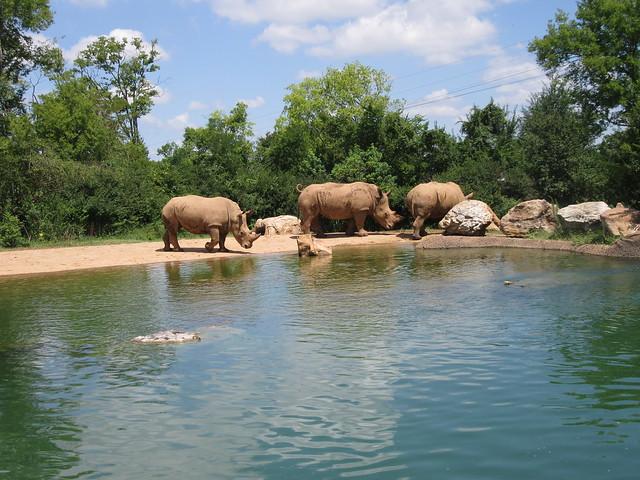 Nashville Zoo at Grassmere - Nashville, TN (1)