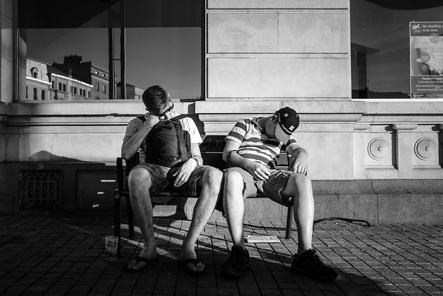 Nap in the sun.