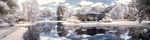 infraredpark infraredview infrarrojo infrarred jardinbotanicobogota