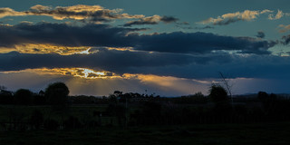 IMG_2244Clive cattle sunset SNS-HDR(3) ps | by roseyposey2009