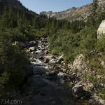 Cascade Creek in Cascade Canyon