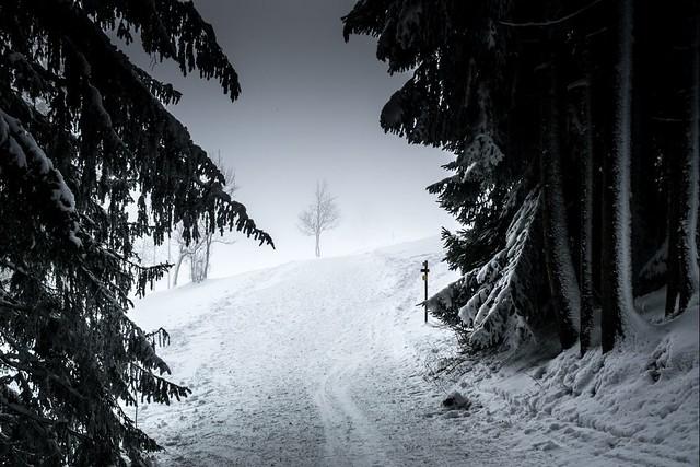 Haute-Savoie, Mont-Blanc, 28