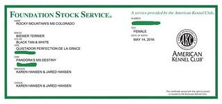 AKC FSS-Certificate | by RBElwell