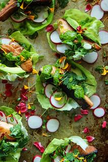 Crispy Salmon Lettuce Cups with Cilantro Tahini Sauce (Paleo) from Heatherchristo.com | by Heather Christo