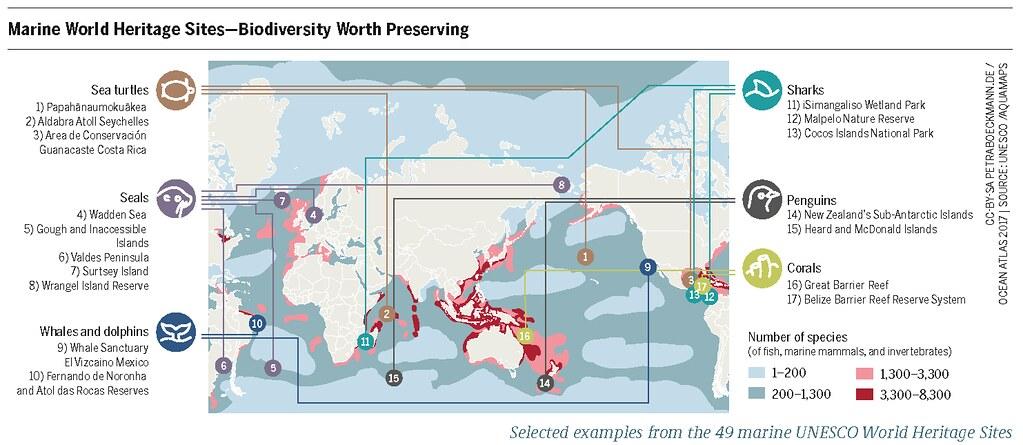 The Ocean Atlas   Heinrich-Böll-Stiftung
