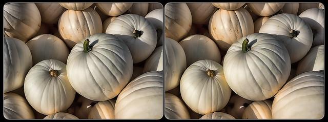 White Pumpkins (Stereo)