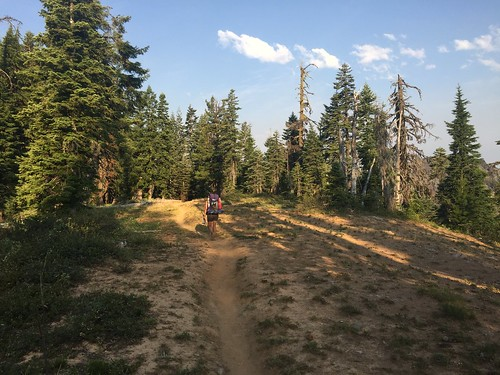 PCT: Day 115