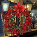 Exposição Natal Prataviera Shopping