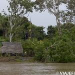 Viajefilos en la Amazonia, Peru 012