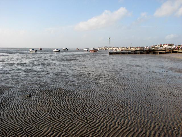 The coast at Thorpe Bay