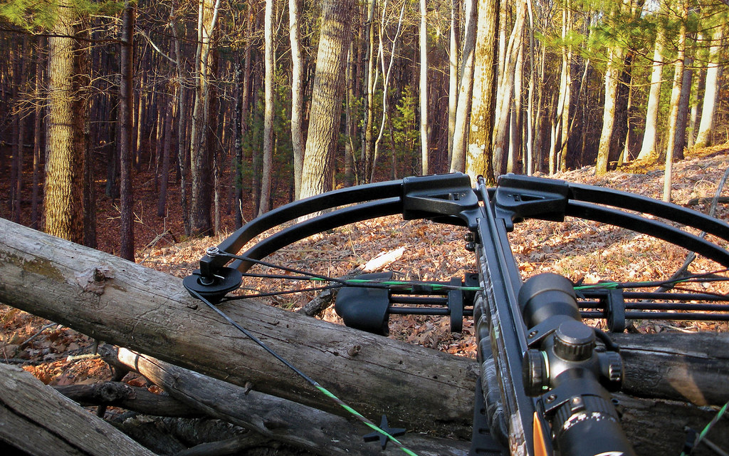 Crossbow Hunting | Crossbow hunting for whitetail deer behin… | Flickr