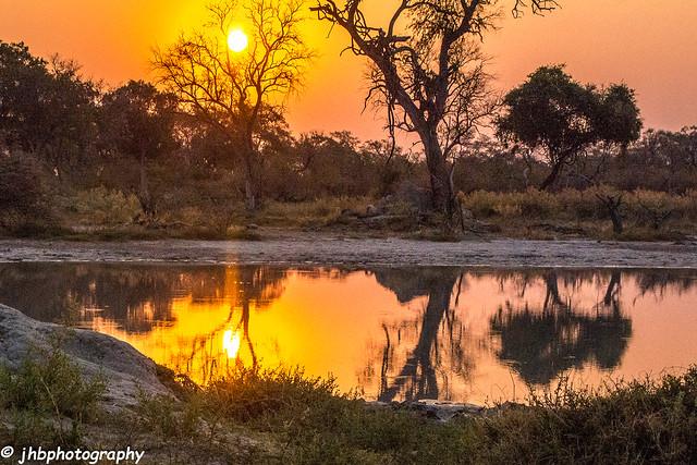 African Sunset - Chief's Island, Okavanga Delta, Botswana, Africa - Summer 2017-292.jpg