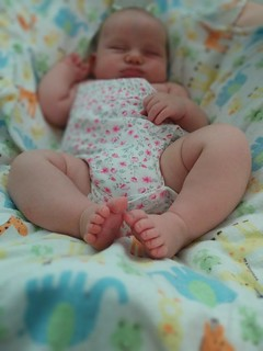 08/28/2017: Five-week-old Sylvia shows her toes | by Lindsey Kuper