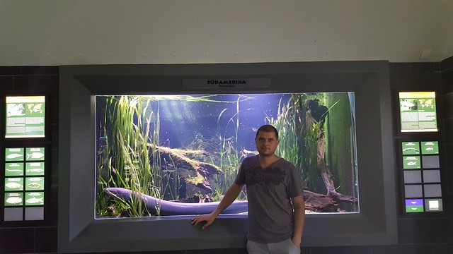 Me with an Electric eel | Leipzig Zoological Garden