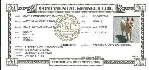 Cont. KC Registration Certificate | by RBElwell