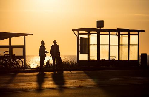 shadow sverige sunset busstop sweden outdoor sea smoking summer skåne viken canonef100400mmf4556lisiiusm scandinavia waitingforthebus canoneos5dsr scania waiting busshållplats coast hav solnedgång skånelän se