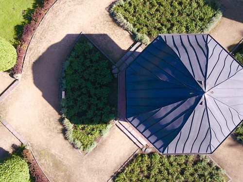 Rose Garden at Volkspark Altona High Angle View Plant Architecture Day Tree Grass Outdoors Built Structure Building Exterior Growth No People Nature Dronephotography at Altonaer Volkspark | by Czernay