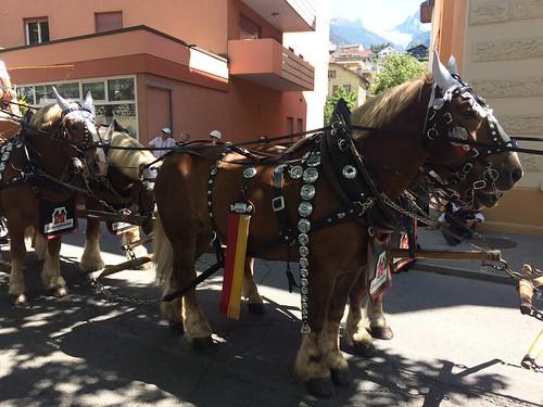 Jodlerfest 25.6.2017 029
