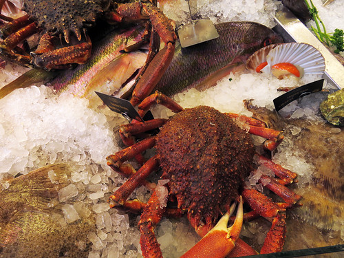 Spider crabs in the Cardiff Market, Wales