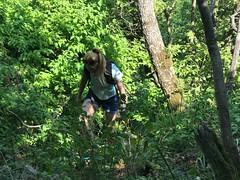 Naszály / Dunakanyar 2 Paragliding