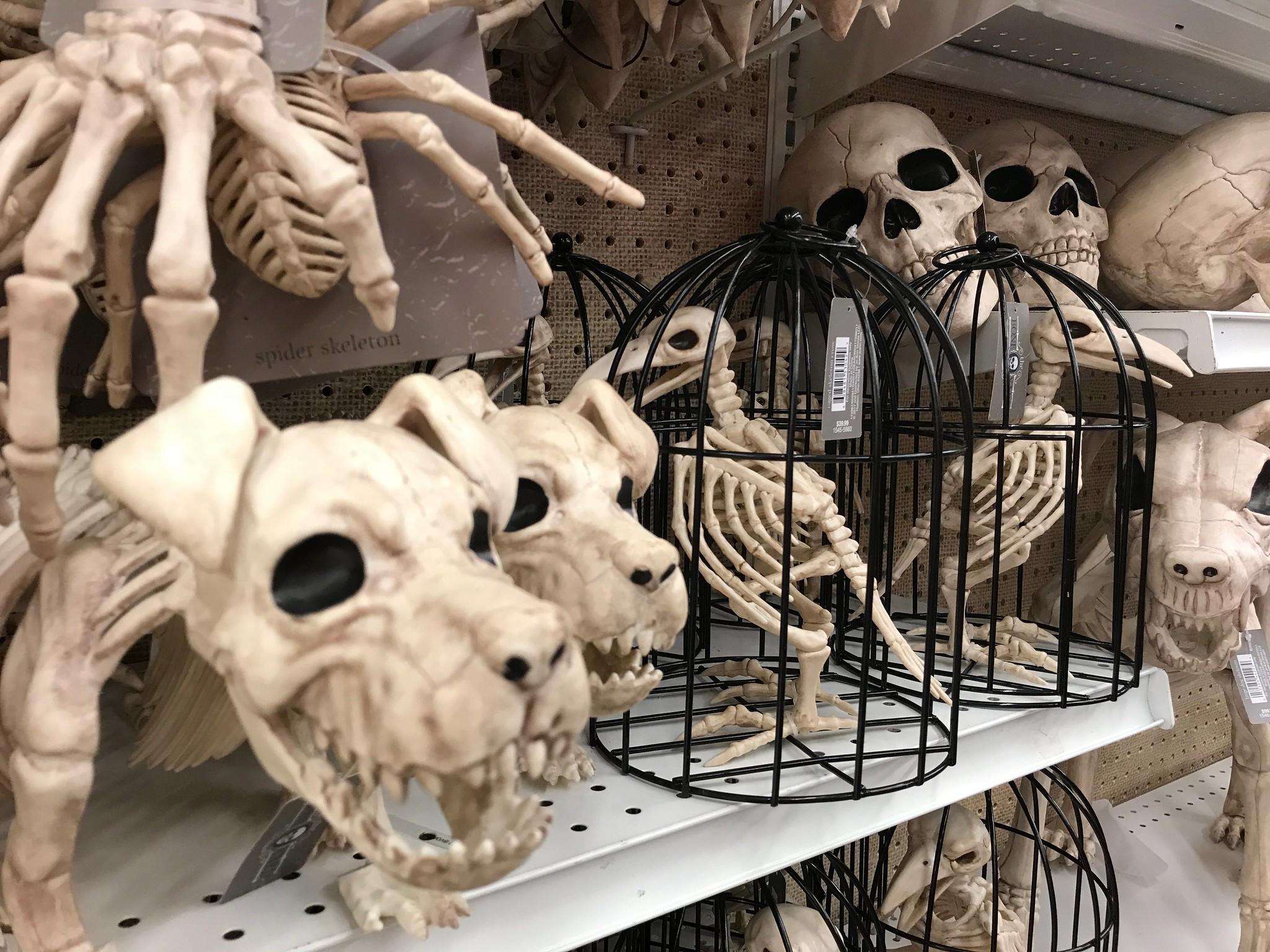 Skeleton Menagerie