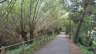 Colliers Wood to Putney Bridge