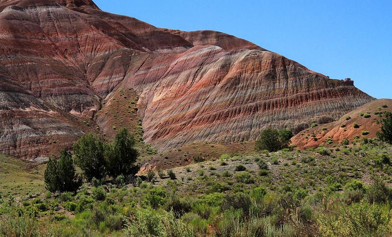 Geology Revealed