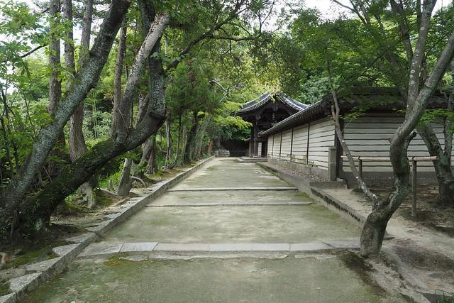 Nara, samedi 12 aout 2017