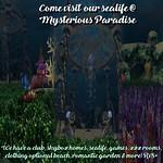Mysterious Paradise Sea life