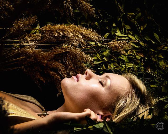 Sleeping Woodland Siren