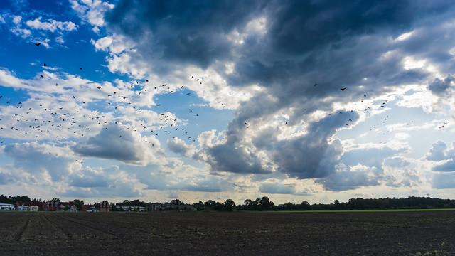 Cloudy Heaven - Wolkiger Himmel