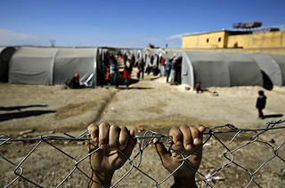Un jove de Kobane (Síria) refugiat a la frontera turca. YANNIS BEHRAKIS/ REUTERS | by Jordi Bernabeu