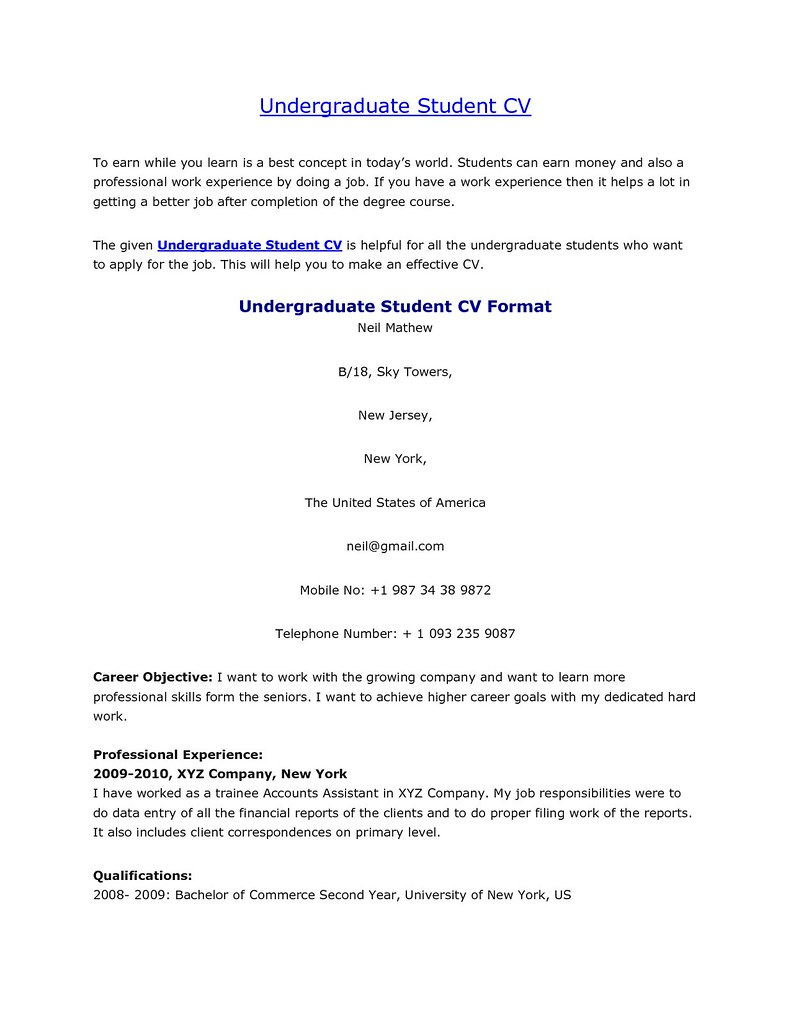 Example Of Resume Undergraduate Student Best Resume Examples